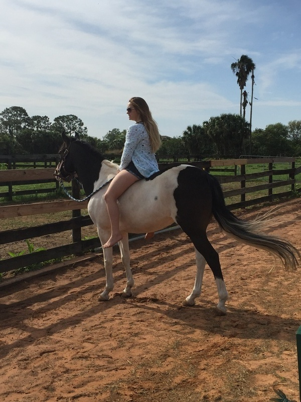 Reiny is a great leadline and walk pony she loves to be in summer camp and pony painting is her favorite
